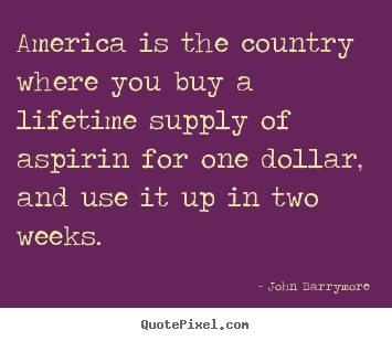 John Barrymore picture quote - America is the country where you buy a lifetime supply.. - Life sayings